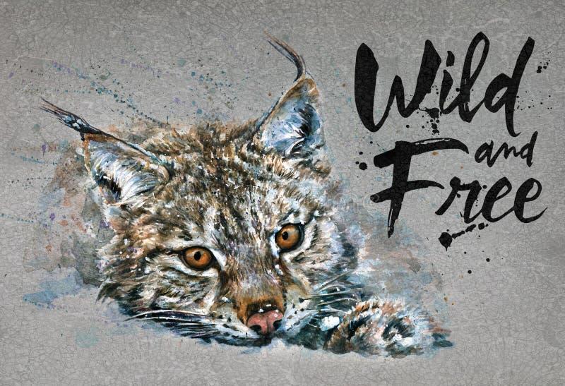 Άγρια και ελεύθερη ζωγραφική watercolor λυγξ με το backgroun, αρπακτικό ζώο ζώων, σχέδιο της μπλούζας, τυπωμένη ύλη, χειμώνας, άγ απεικόνιση αποθεμάτων