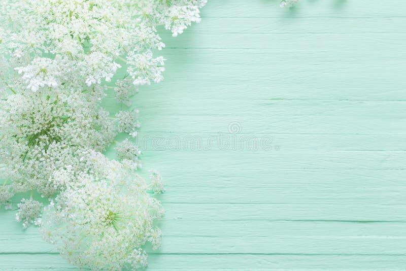 άγρια λουλούδια στο πράσινο ξύλινο υπόβαθρο στοκ εικόνες