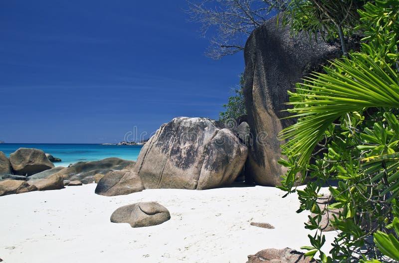 Άγρια παραλία στοκ φωτογραφία με δικαίωμα ελεύθερης χρήσης