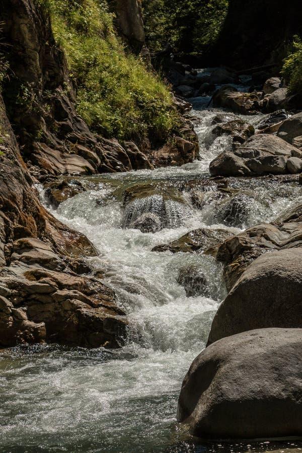 άγρια περιοχές κολπίσκο&up στοκ φωτογραφία με δικαίωμα ελεύθερης χρήσης