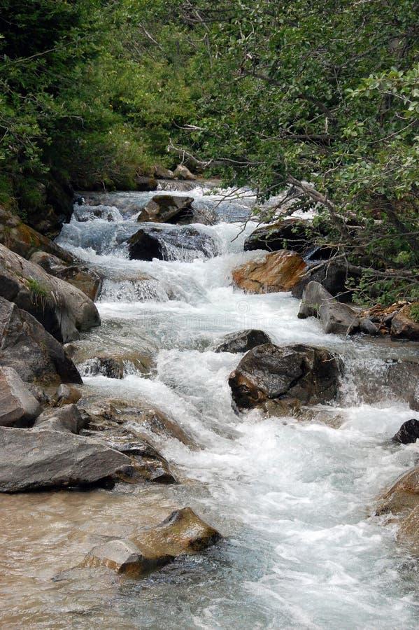 άγρια περιοχές ποταμών στοκ εικόνα με δικαίωμα ελεύθερης χρήσης
