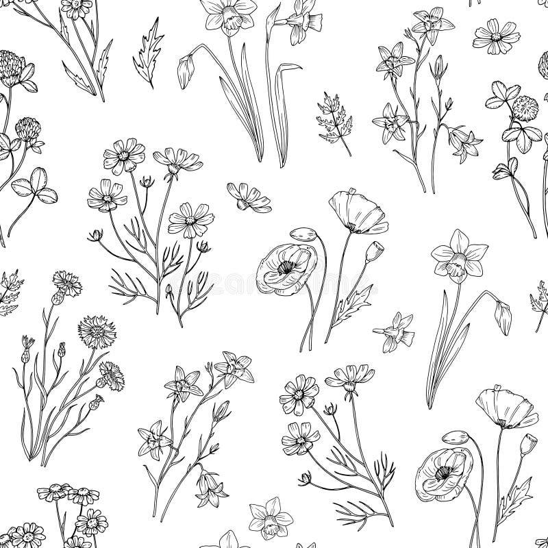 άγρια περιοχές προτύπων λ&omicro Floral άνευ ραφής ταπετσαρία με τα wildflowers Εκλεκτής ποιότητας διανυσματικό υπόβαθρο υφάσματο απεικόνιση αποθεμάτων