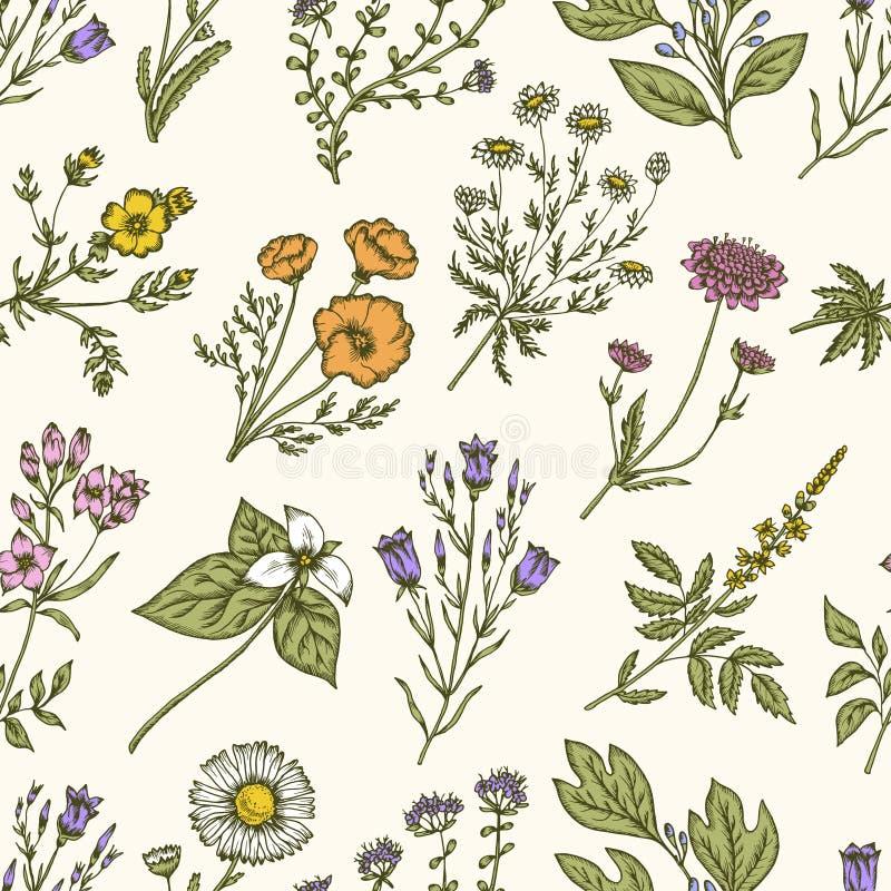 άγρια περιοχές χορταριών &lambda floral πρότυπο άνευ ραφής Διανυσματική εκλεκτής ποιότητας απεικόνιση διανυσματική απεικόνιση
