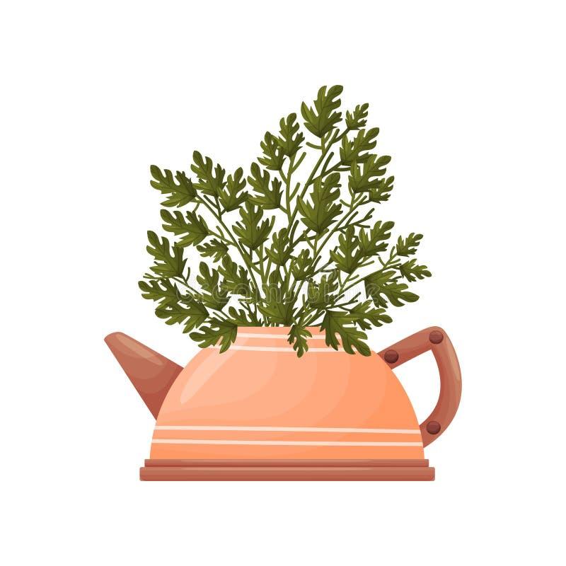 Άγρια πράσινα σε ένα βάζο teapot αργίλου E απεικόνιση αποθεμάτων