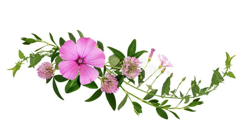 Άγρια ρόδινα λουλούδια και πράσινη χλόη σε μια floral ρύθμιση κυμάτων στοκ φωτογραφία