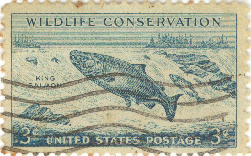 άγρια φύση γραμματοσήμων σ&upsi στοκ φωτογραφία με δικαίωμα ελεύθερης χρήσης