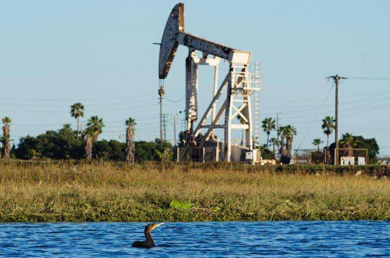 Άγρια φύση κοντά στη πλατφόρμα άντλησης πετρελαίου στοκ εικόνα