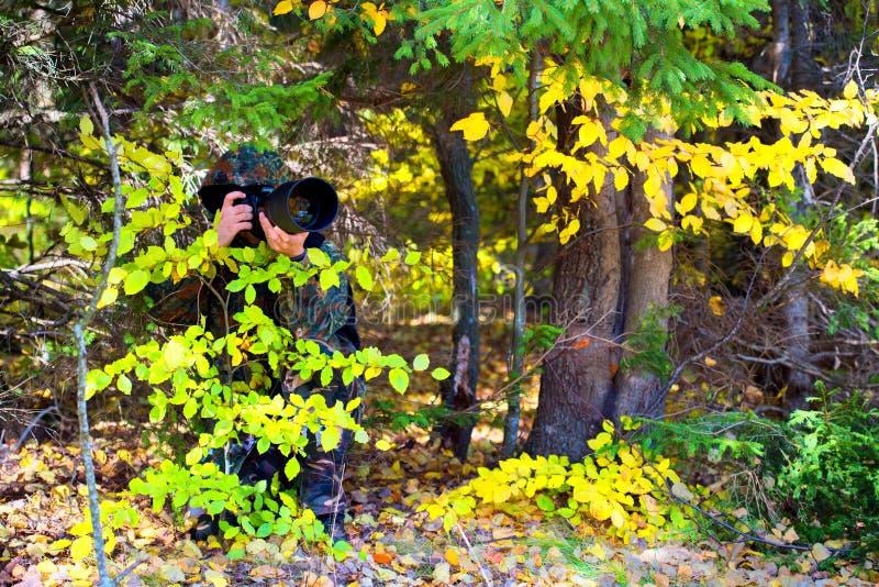 Άγρια φύση, φωτογράφος ατόμων φύσης στο πυροβολισμό εξαρτήσεων κάλυψης, που παίρνει τις εικόνες στοκ φωτογραφία
