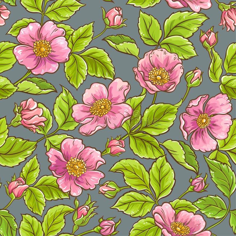 Άγριος αυξήθηκε σχέδιο λουλουδιών διανυσματική απεικόνιση