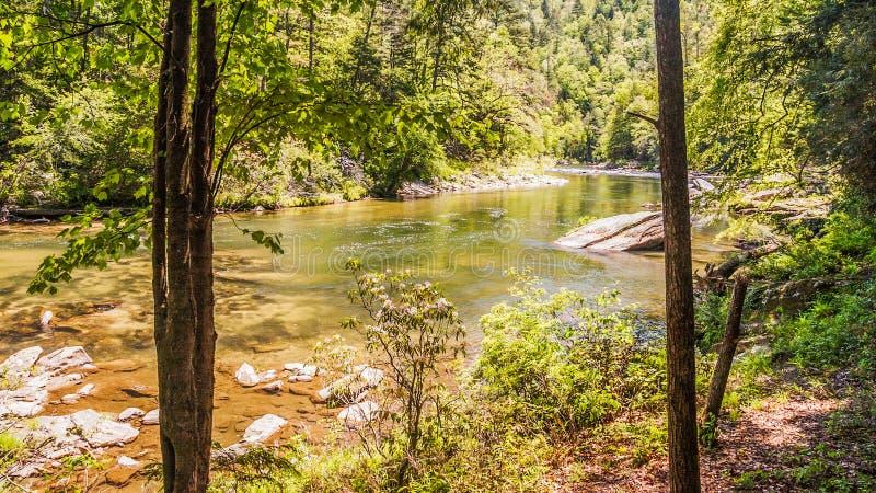 Άγριος και φυσικός ποταμός Chattooga στοκ εικόνες
