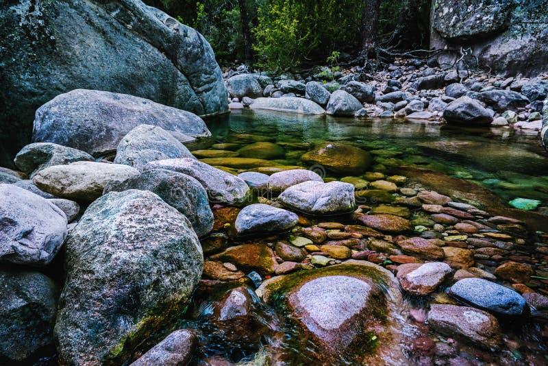 Άγριος ρομαντικός ποταμός στην Κορσική της Γαλλίας στοκ φωτογραφία