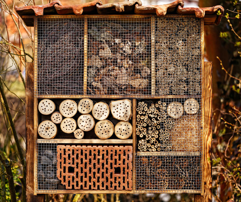 Άγριο ξενοδοχείο μελισσών - ξενοδοχείο εντόμων στοκ φωτογραφία με δικαίωμα ελεύθερης χρήσης