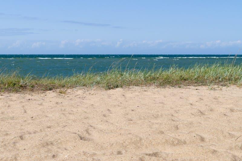 Άγριο τοπίο παραλιών της θάλασσας της Βαλτικής στοκ φωτογραφία με δικαίωμα ελεύθερης χρήσης