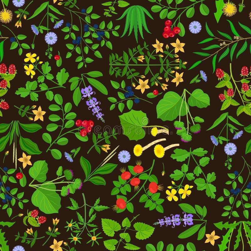 Άγριο υπόβαθρο λουλουδιών και χορταριών διανυσματική απεικόνιση