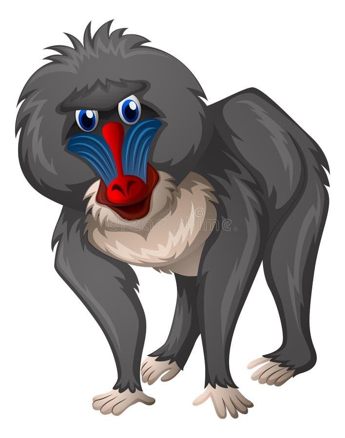 Άγριο baboon στο άσπρο υπόβαθρο διανυσματική απεικόνιση