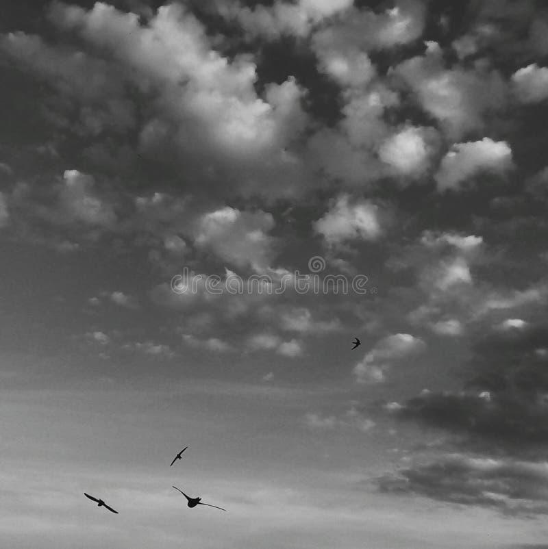 Άθικτος ουρανός στοκ φωτογραφίες με δικαίωμα ελεύθερης χρήσης
