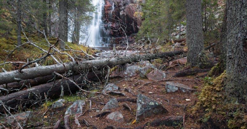 Άθικτος φυσικός ποταμός που τρέχει μέσω του δάσους το φθινόπωρο στοκ φωτογραφίες
