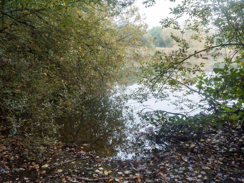 άκρη των μειωμένων φύλλων πτώσης φθινοπώρου δέντρων επιφάνειας ποταμών νερού εθνικών στοκ φωτογραφίες με δικαίωμα ελεύθερης χρήσης
