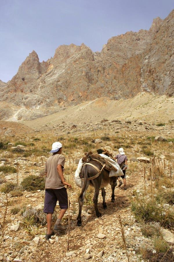 άλογο αγοριών δικοί τους που ταξιδεύουν δύο στοκ εικόνα με δικαίωμα ελεύθερης χρήσης
