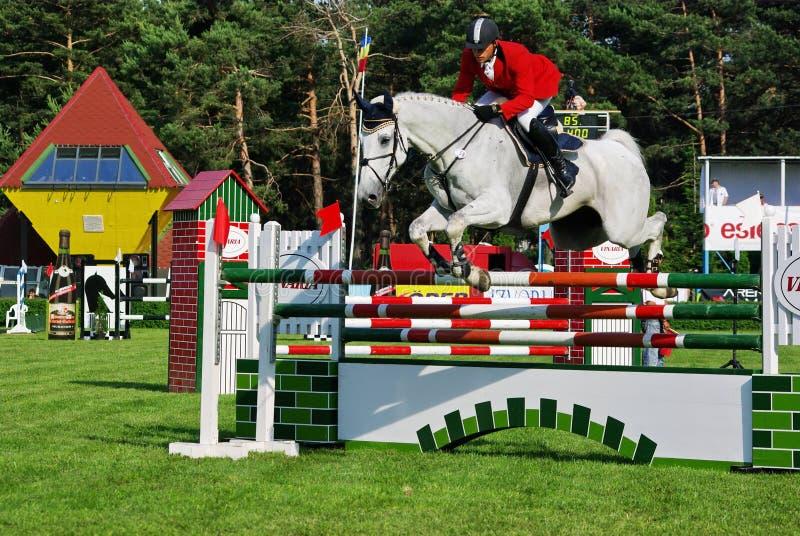 άλογο ανταγωνισμού στοκ φωτογραφία