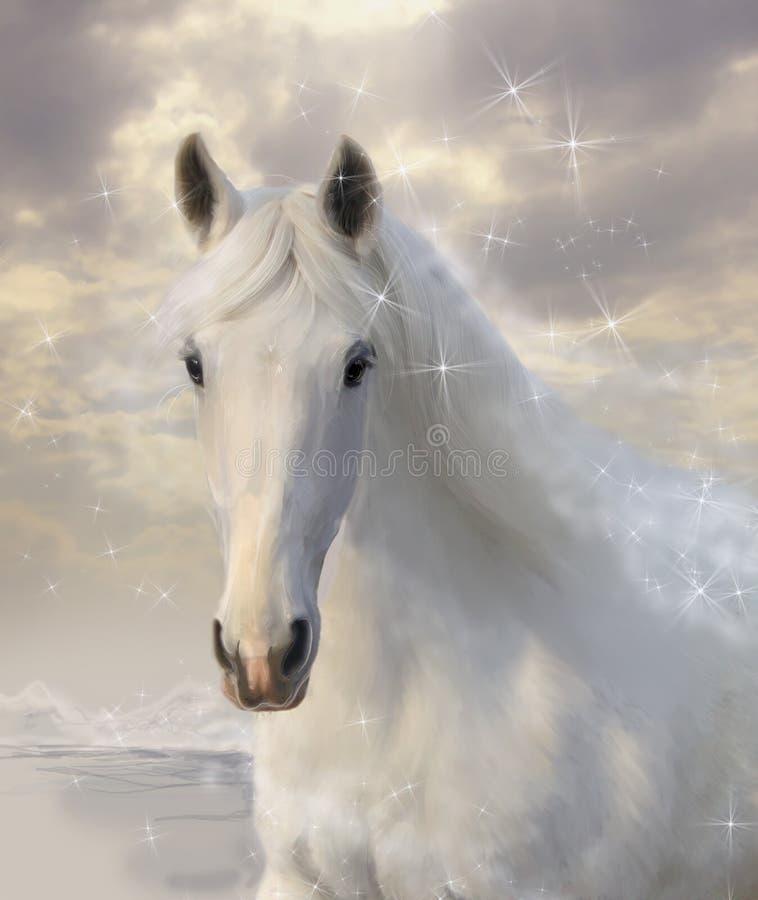 Άλογο αστεριών ελεύθερη απεικόνιση δικαιώματος