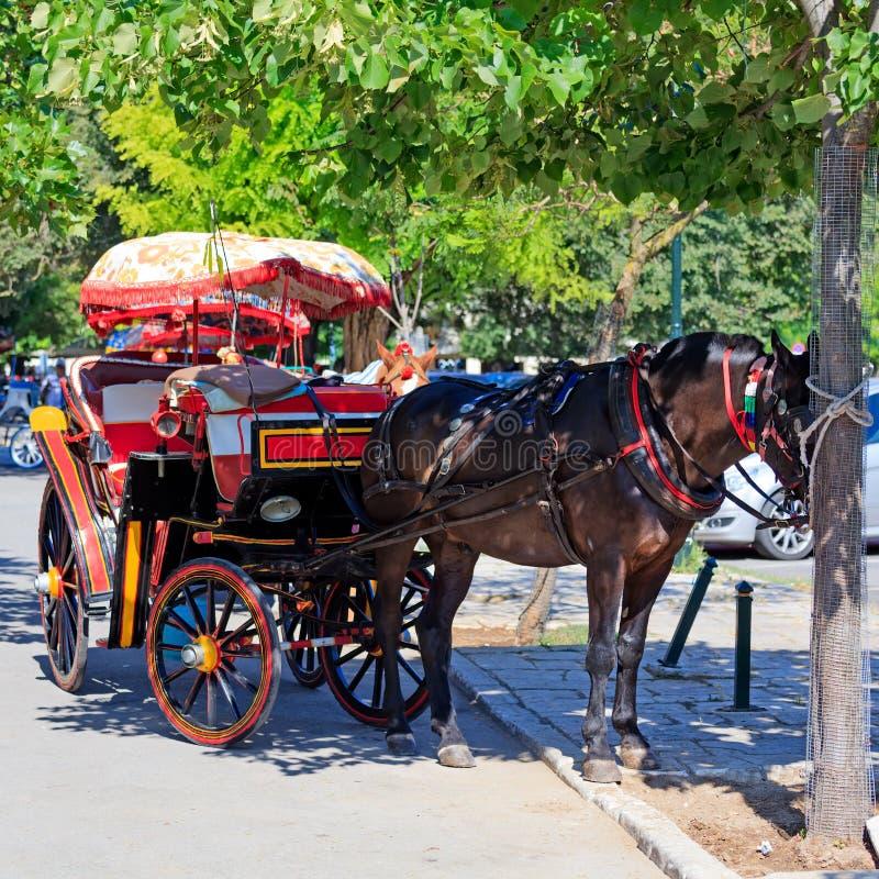 Άλογο με το αμάξι τουριστών στοκ φωτογραφίες με δικαίωμα ελεύθερης χρήσης