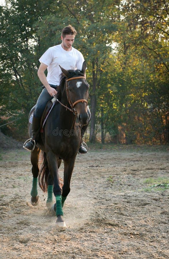 Άλογο οδήγησης νεαρών άνδρων στοκ εικόνα με δικαίωμα ελεύθερης χρήσης