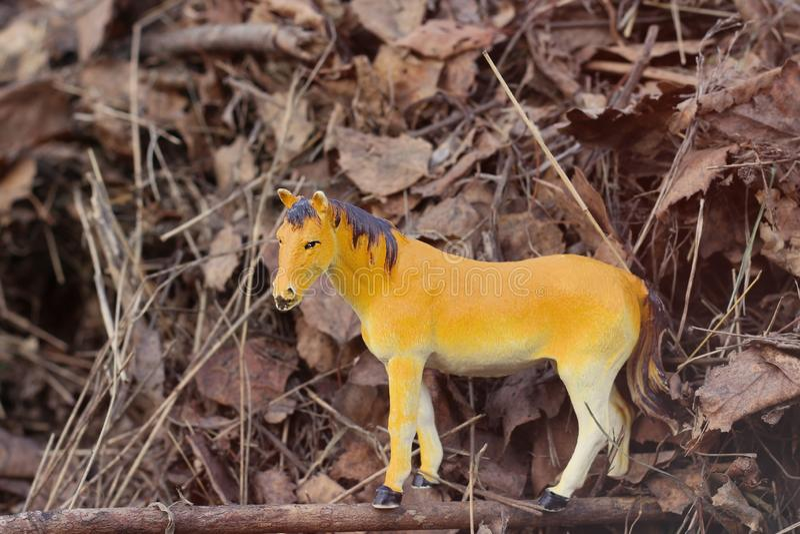 Άλογο παιχνιδιών στη φύση που φωτογραφίζεται όπως πραγματική μεταξύ στοκ εικόνα με δικαίωμα ελεύθερης χρήσης