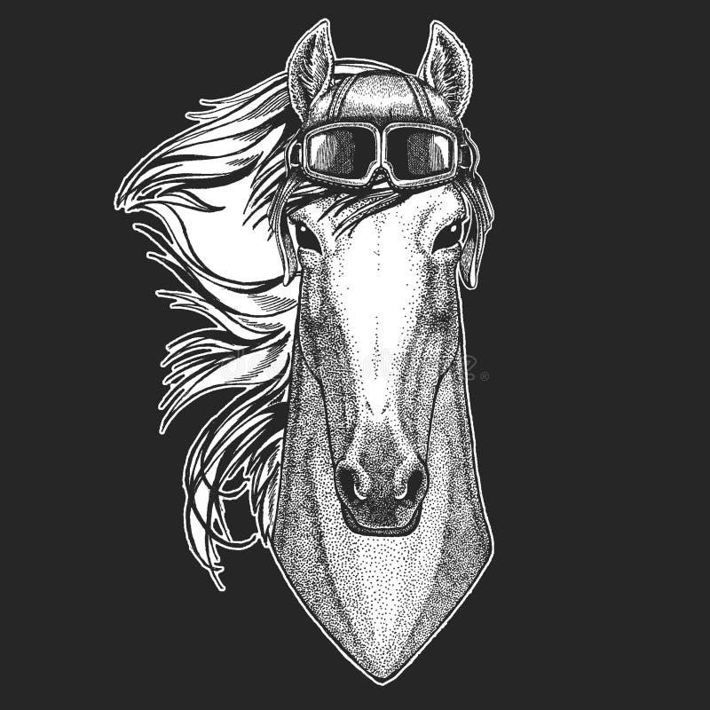 Άλογο, άλογο που φορά το καπέλο αεροπόρων Τυπωμένη ύλη για τα ενδύματα παιδιών, γράμμα Τ, μπλούζα Πειραματικό άγριο ζώο διανυσματική απεικόνιση