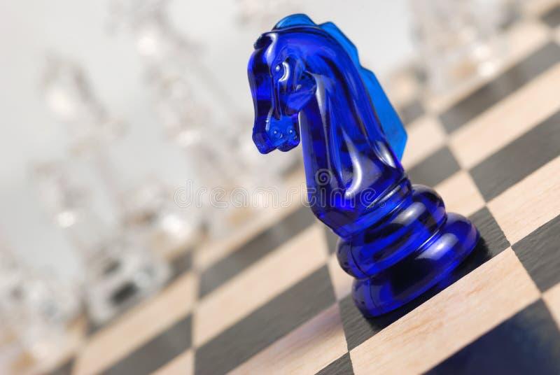 άλογο σκακιού στοκ εικόνες με δικαίωμα ελεύθερης χρήσης