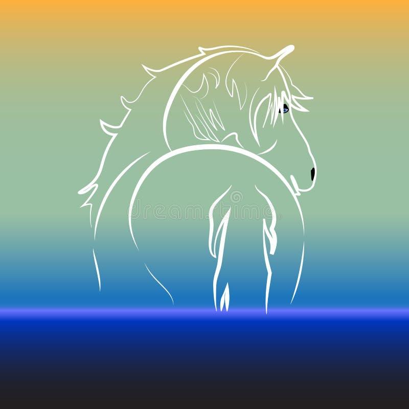 Άλογο στη διανυσματική εικόνα καρτών ταυτότητας σχεδίου απεικόνισης υποβάθρου νερού ελεύθερη απεικόνιση δικαιώματος