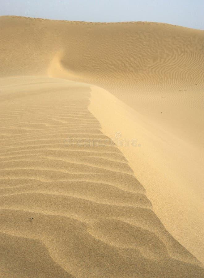 άμμος βουνών στοκ εικόνες με δικαίωμα ελεύθερης χρήσης