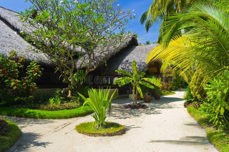 άμμος διαβάσεων μπανγκαλ στοκ εικόνα με δικαίωμα ελεύθερης χρήσης
