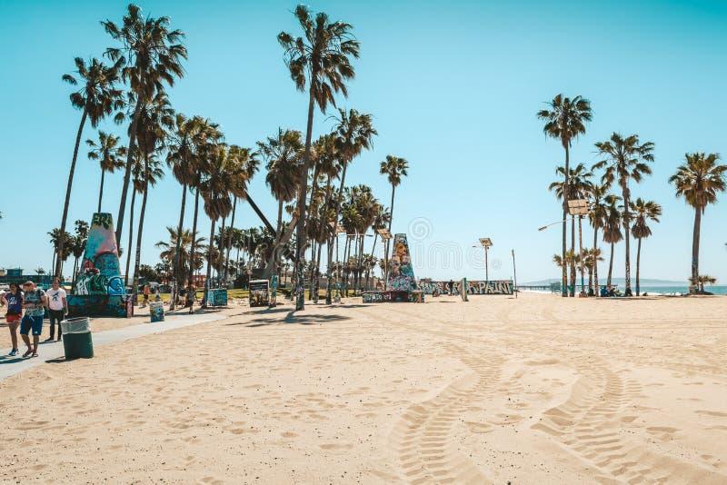 Άμμος και φοίνικες στην παραλία της Βενετίας στοκ φωτογραφία