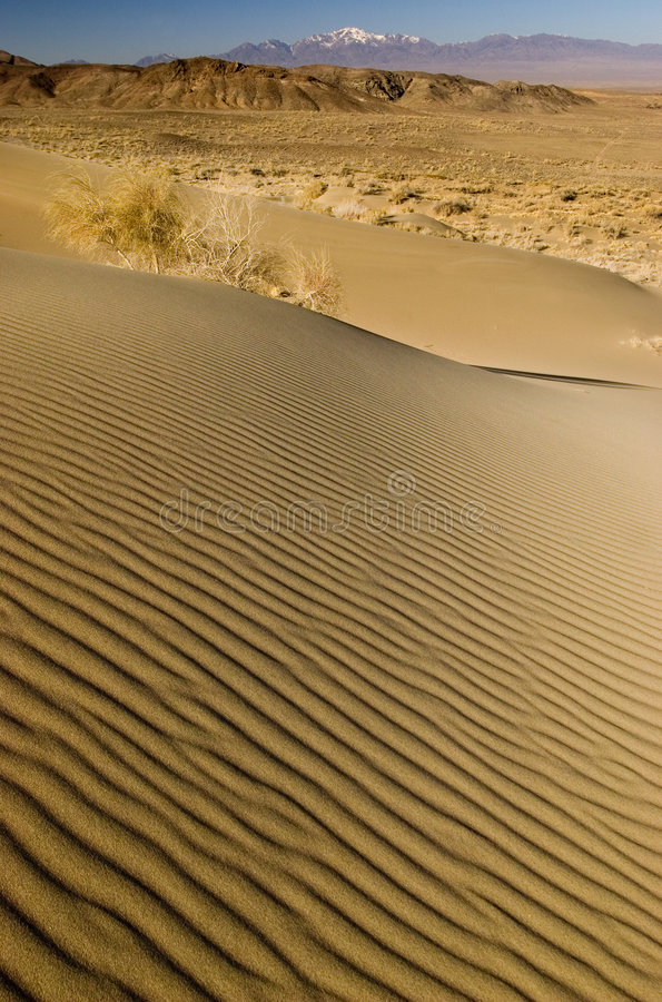 άμμος κυματώσεων αμμόλοφ&ome στοκ φωτογραφία με δικαίωμα ελεύθερης χρήσης