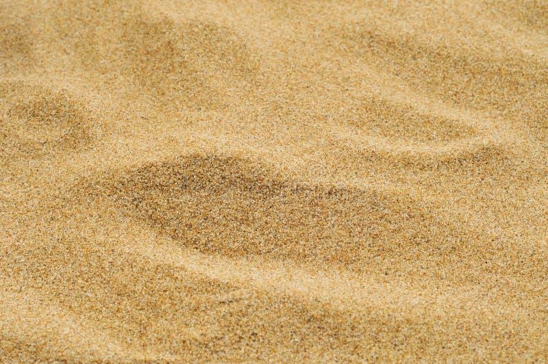 Άμμος μιας παραλίας ή μιας ερήμου ή ενός σκάμμα στοκ εικόνα