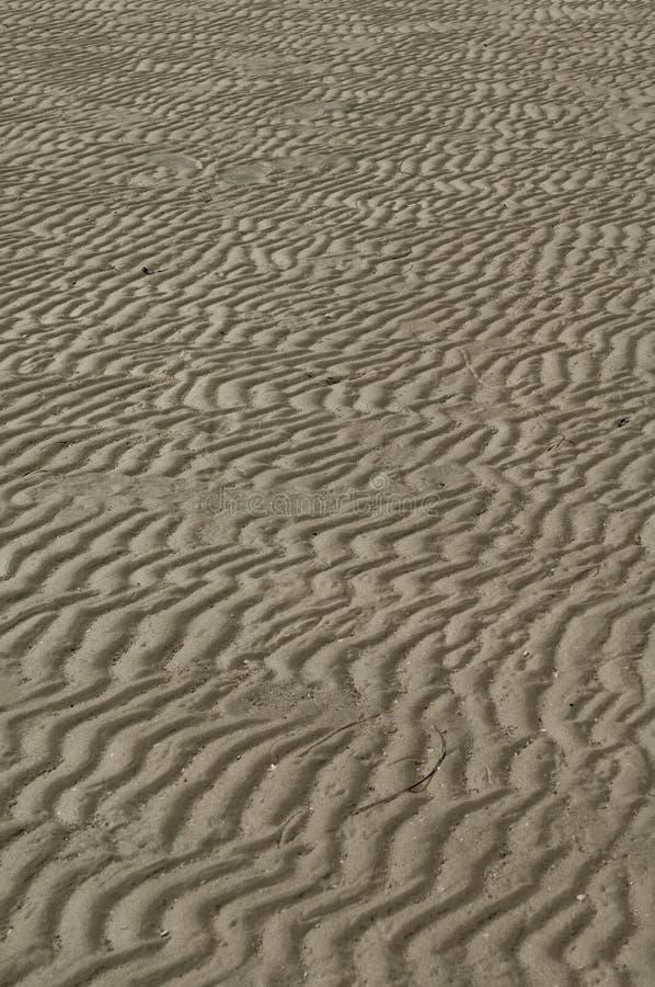 Download άμμος παραλιών στοκ εικόνες. εικόνα από γραμμές, μακροεντολή - 13176482