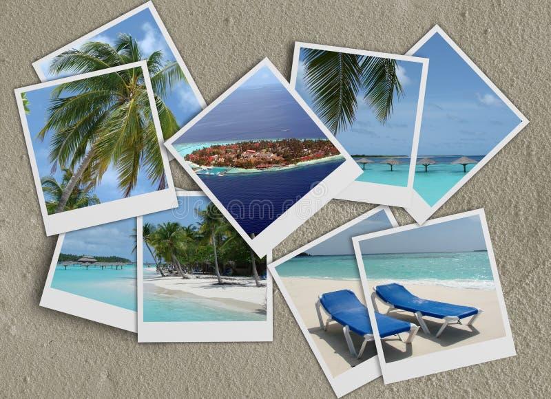 άμμος polaroids κολάζ διανυσματική απεικόνιση