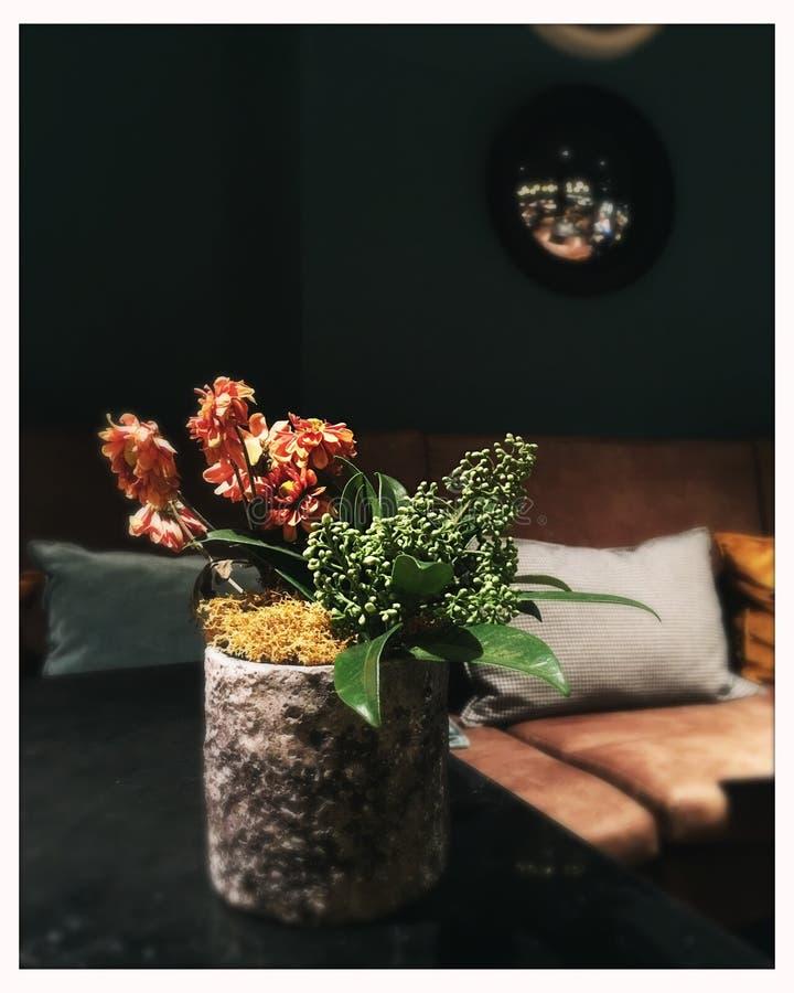 Άνεση με τα λουλούδια στοκ εικόνα