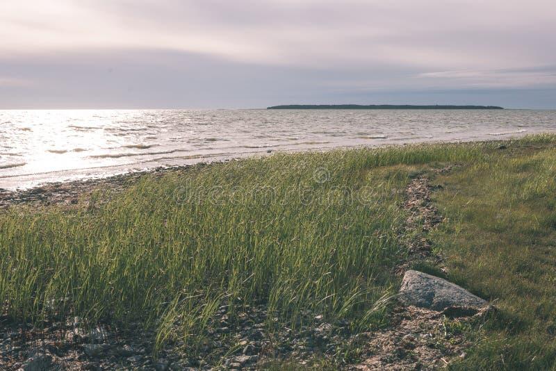 Άνετη παραλία της θάλασσας της Βαλτικής με τους βράχους και το πράσινο vegetat ελεύθερη απεικόνιση δικαιώματος