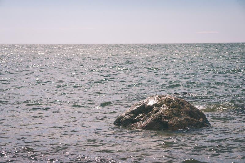 Άνετη παραλία της θάλασσας της Βαλτικής με τους βράχους και το πράσινο vegetat διανυσματική απεικόνιση