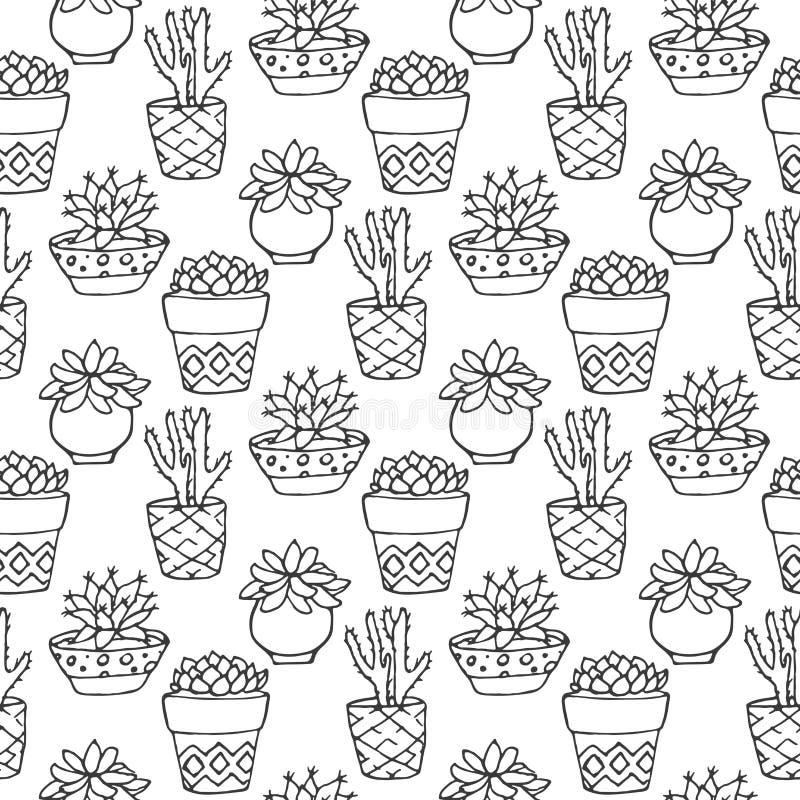 Άνευ ραφής απεικόνιση σχεδίων κάκτων Διανυσματικοί succulent και οι κάκτοι δίνει το συρμένο σύνολο Στις εγκαταστάσεις πορτών στα  απεικόνιση αποθεμάτων