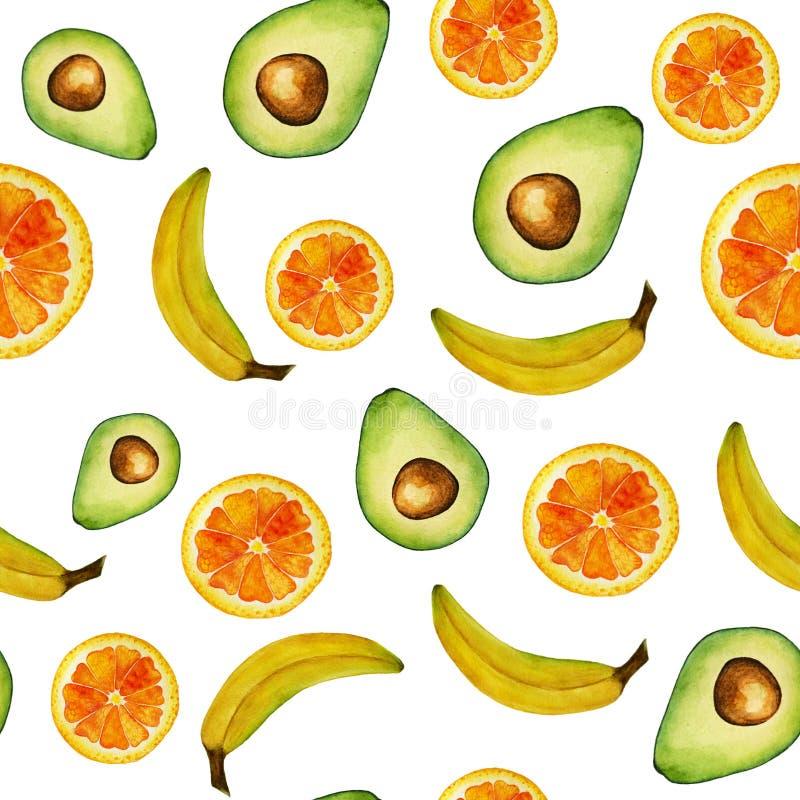 Άνευ ραφής απομονωμένο πορτοκάλι φρούτων watercolor, αβοκάντο, σχέδιο μπανανών στο άσπρο υπόβαθρο ελεύθερη απεικόνιση δικαιώματος