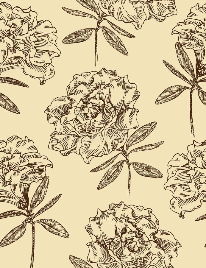 άνευ ραφής διάνυσμα προτύπων αζαλεών floral διανυσματική απεικόνιση