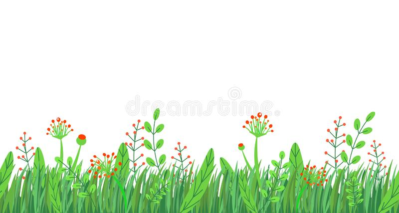 Άνευ ραφής διάνυσμα συνόρων χλόης άνοιξη Floral στοιχείο εγκαταστάσεων φύσης άνοιξης wildflowers που απομονώνεται στο άσπρο υπόβα διανυσματική απεικόνιση