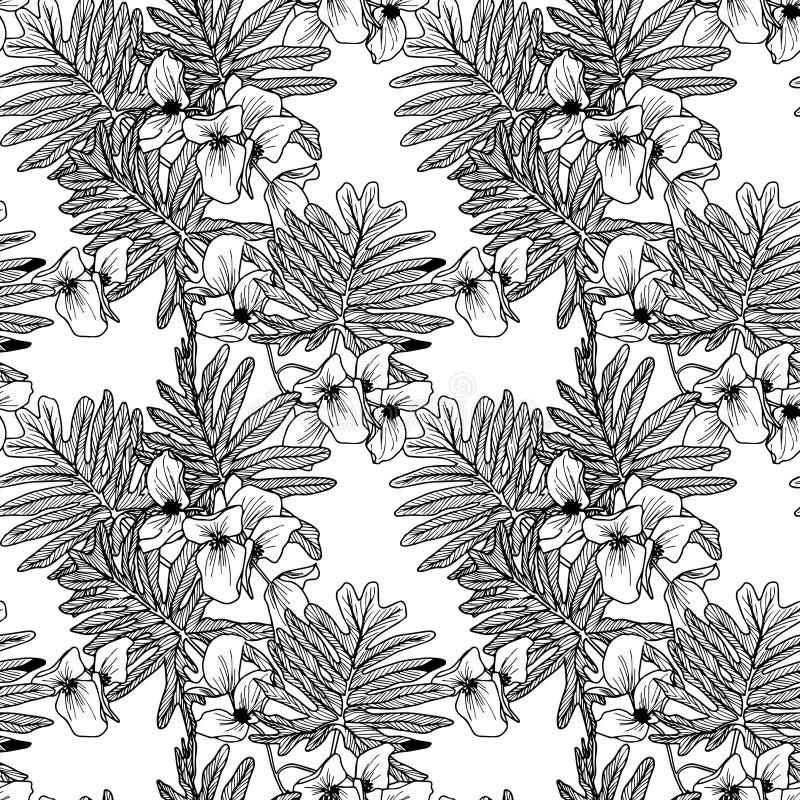 Άνευ ραφής διανυσματικά floral γραπτά σχέδια διανυσματική απεικόνιση