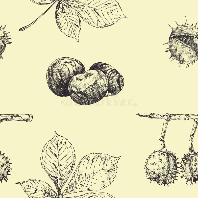 Άνευ ραφής διανυσματικό σχέδιο φθινοπώρου με τα φύλλα και τα καρύδια κάστανων Εκλεκτής ποιότητας εποχιακό ντεκόρ πτώσης συρμένος  απεικόνιση αποθεμάτων