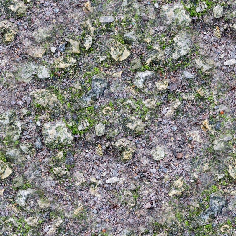 Άνευ ραφής δύσκολο έδαφος με τη σύσταση βρύου Υπόβαθρο στοκ εικόνες