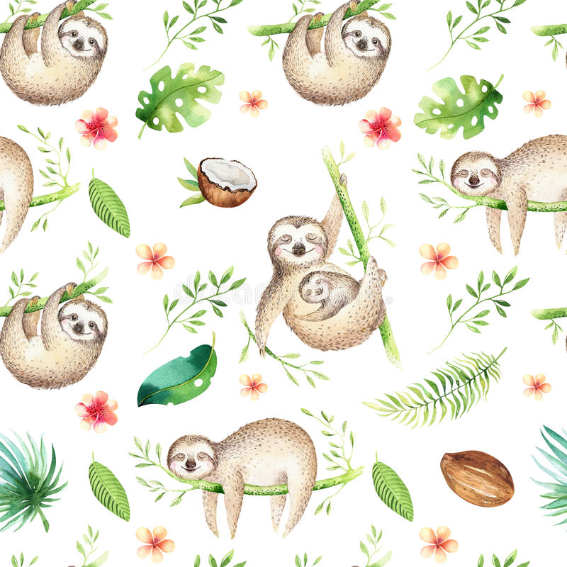 Άνευ ραφής ζωγραφική σχεδίων βρεφικών σταθμών νωθρότητας ζώων μωρών Τροπικό σχέδιο boho Watercolor, τροπικό σχέδιο παιδιών απεικόνιση αποθεμάτων