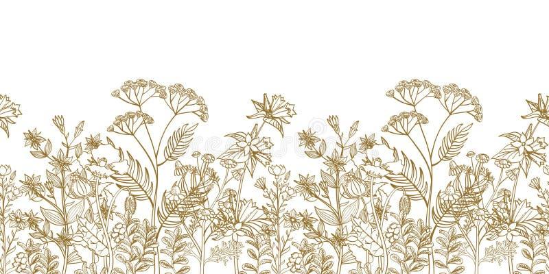 Άνευ ραφής διανυσματικά floral σύνορα με τα μαύρα άσπρα συρμένα χέρι χορτάρια και τα άγρια λουλούδια απεικόνιση αποθεμάτων